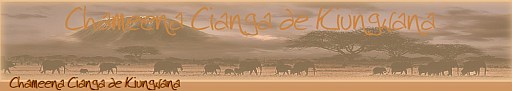 chameena-banner