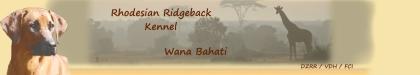 wana-bahati-banner